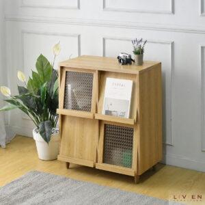 Iaan Cabinet